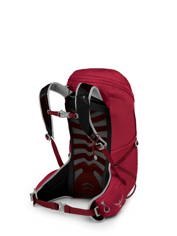 Osprey Talon 26 cosmic red